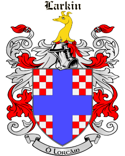 LARKIN family crest